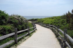 Walkway to Coast Guard Beach