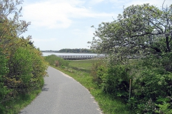 Nauset Trail to Coast Guard Beach